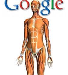 GoogleBodyBrowser